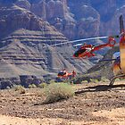 Choppers in the Canyon by Jennifer Heseltine