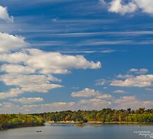 Drive-out point, Barren River Lake by Nicole  McKinney