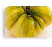 Green Tomato Macro  Canvas Print