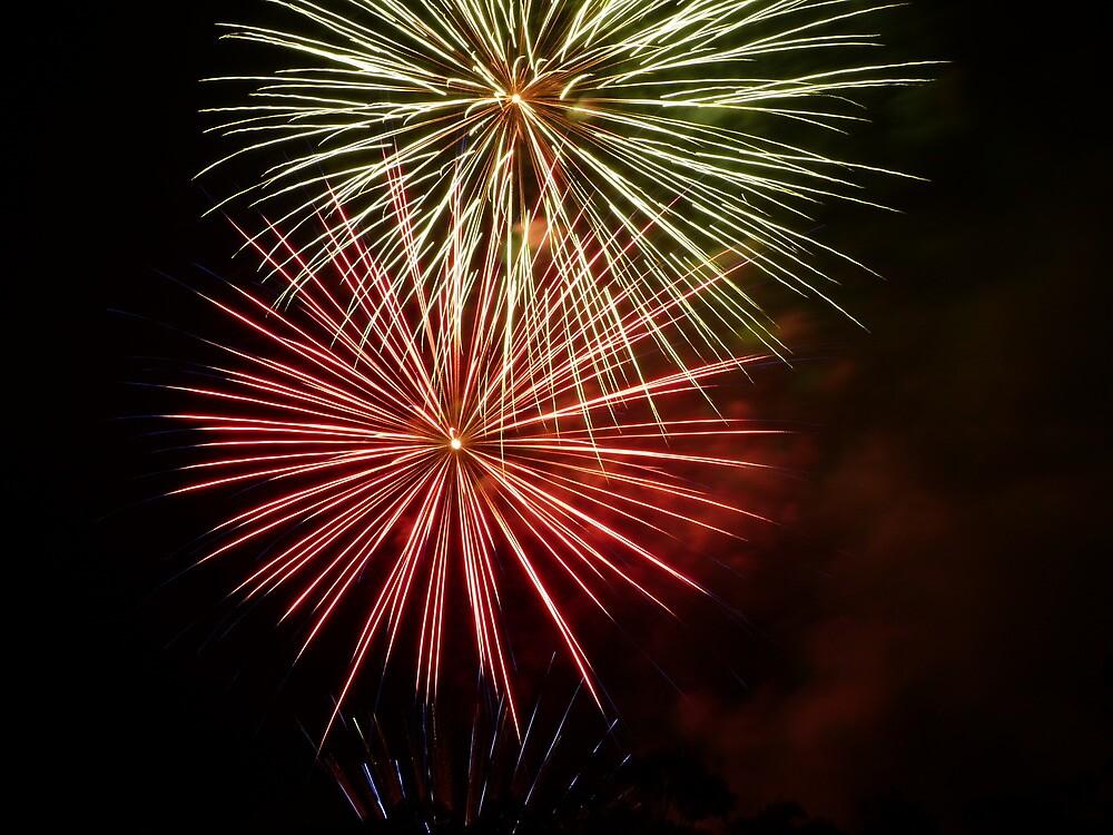 Bunnings fireworks by PhotosByG