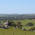 North/East View from Top Paddock, 'Arilka' S.Australia. by Rita Blom