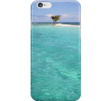 Three Palm Island 2 iPhone Case/Skin