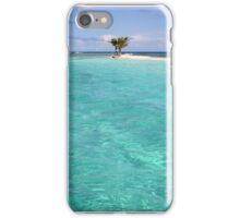 Three Palm Island 2 iPhone Case/Skin