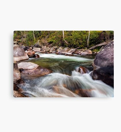 The Motion of Liquid Canvas Print