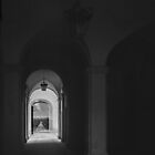 In a palace Spoleto 198404090066 by Fred Mitchell
