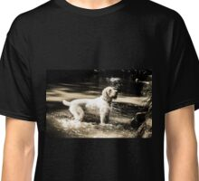Spinone - In the pool Classic T-Shirt