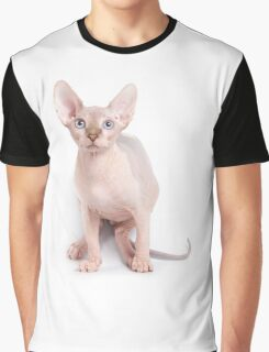 Sphinx kitten with blue eyes Graphic T-Shirt