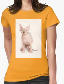 Sphinx kitten with blue eyes Womens Fitted T-Shirt