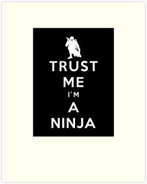 Trust Me I'm A Ninja by Royal Bros Art
