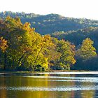 Lake Killarney by Susan S. Kline