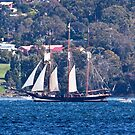 Tall Ships, Hobart, Tasmania - Oosterchelde on her way down the Derwent by Odille Esmonde-Morgan