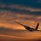 Last Flight Out by diggle