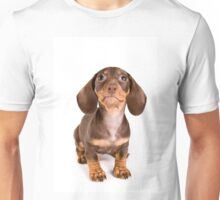Brown dachshund puppy Unisex T-Shirt
