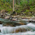 Rocks & Rapids by Mark  Lucey
