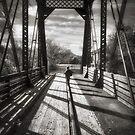 Rail Rider by Bob Larson