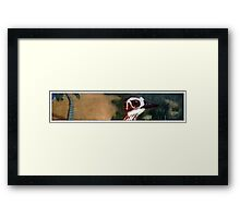 Curlew on the Beach Framed Print