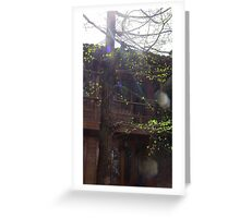 Light Leaks Greeting Card