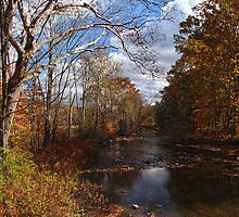 Flowing with the Autumn Stream by PineSinger
