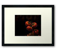 Halloween Fruit of the Vine - Pumpkin orange still life Framed Print