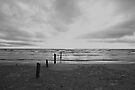 Sunset on Sauble Beach - Black and White by Yannik Hay