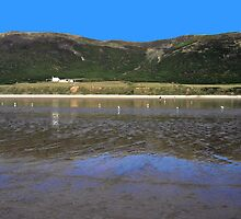 Rhossili Bay by Avril Harris