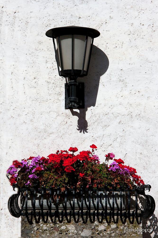 Lantern Geraniums by phil decocco