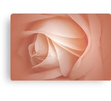 Misty Soft Peach Rose Canvas Print