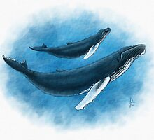 Humpback Mother & Calf by Art-by-Aelia