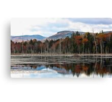 Remote Pond - Beaver Lodge Canvas Print