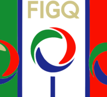 Italy Quidditch - Large Sticker