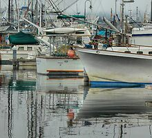 Fisherman's Terminal by Sue Morgan