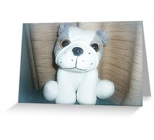 Pete the Pup - A gorgeous Gift Greeting Card