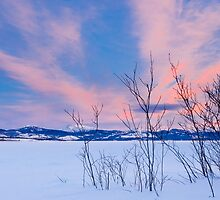 Scenic winter at frozen Lake Laberge Yukon Canada by ImagoBorealis