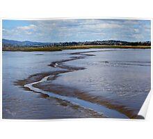 Tamar Wetlands Poster