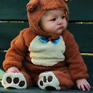 So Beary Cute by Debbie Roelle