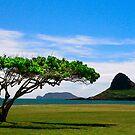 Chinamans Hat in Hawaii 2013   U.S.A. by Maureen Clark