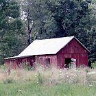 The Red Barn by Leann  Rardin