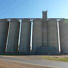 Wee Waa grain silos by DashTravels