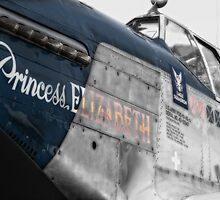 Princess Elizabeth Mustang by Nigel Bangert