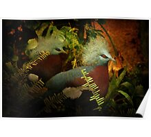 Two Victoria Crowned Pigeons in mystery forest Poster