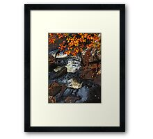 Soulful Autumn Stream Framed Print