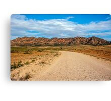 Outback Road Canvas Print
