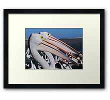 Double Take Framed Print