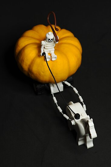 Pumpkin carriage by playwell