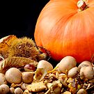 Wild mushrooms chestnuts and pumpkin on black by 7horses