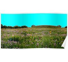 Butterfly Meadow Poster