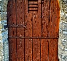 The Door - Vintage Art By Sharon Cummings by Sharon Cummings