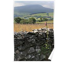 Welsh Dry Stone Wall Poster