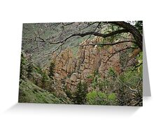 Rocky Mountains (Spring) III Greeting Card
