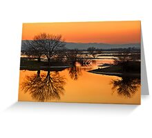 Marshlands of Kerkini Greeting Card